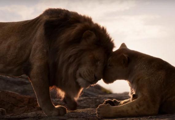 il re leone cinematown.it