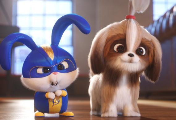 pets 2 cinematown.it